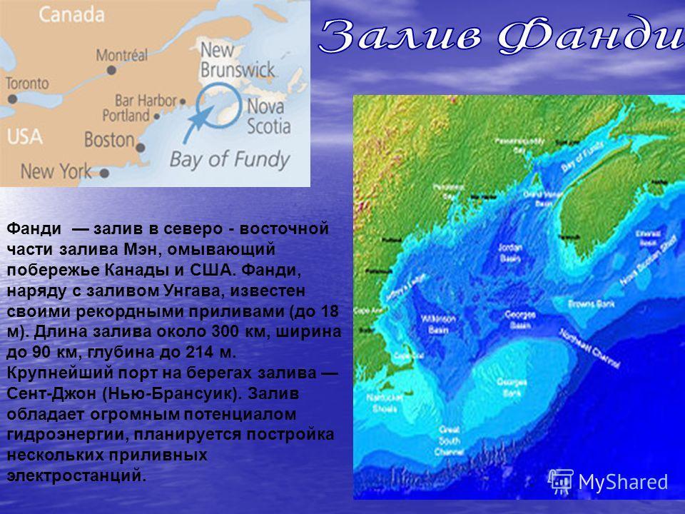 Фанди залив в северо - восточной части залива Мэн, омывающий побережье Канады и США. Фанди, наряду с заливом Унгава, известен своими рекордными приливами (до 18 м). Длина залива около 300 км, ширина до 90 км, глубина до 214 м. Крупнейший порт на бере
