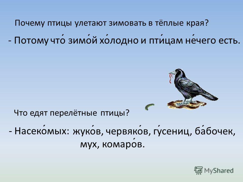 Выбери и назови перелётных птиц. ворон ́ на сквере ́ ц ла ́ сточка ле ́ бель жура ́ вль а ́ ист сини ́ ца сова ́ го ́ лубь