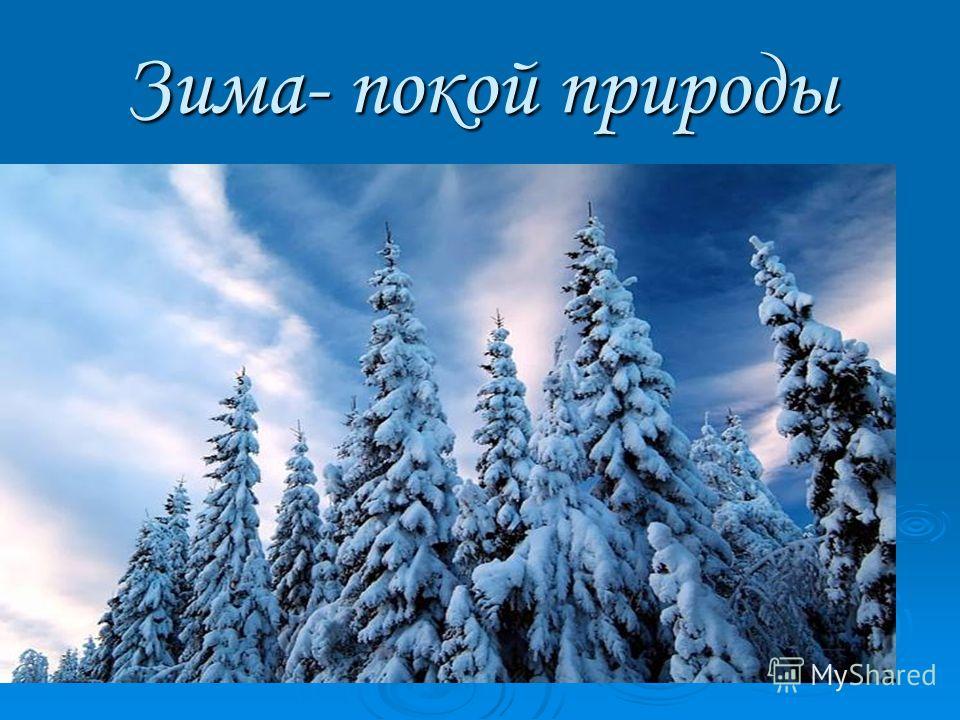 Зима- покой природы