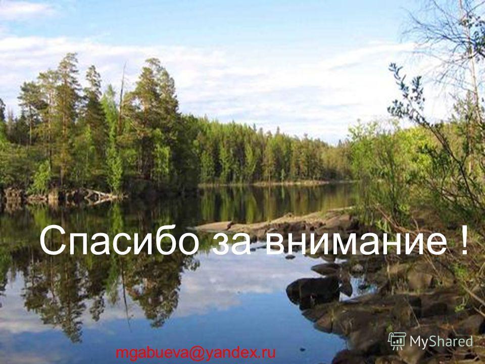 Спасибо за внимание ! mgabueva@yandex.ru