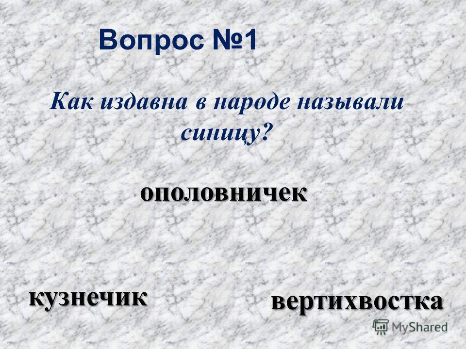 Вопрос 1 ополовничек кузнечик вертихвостка Как издавна в народе называли синицу?