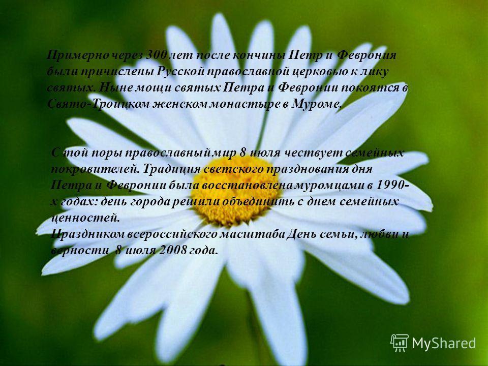 . Примерно через 300 лет после кончины Петр и Феврония были причислены Русской православной церковью к лику святых. Ныне мощи святых Петра и Февронии покоятся в Свято-Троицком женском монастыре в Муроме. С той поры православный мир 8 июля чествует се
