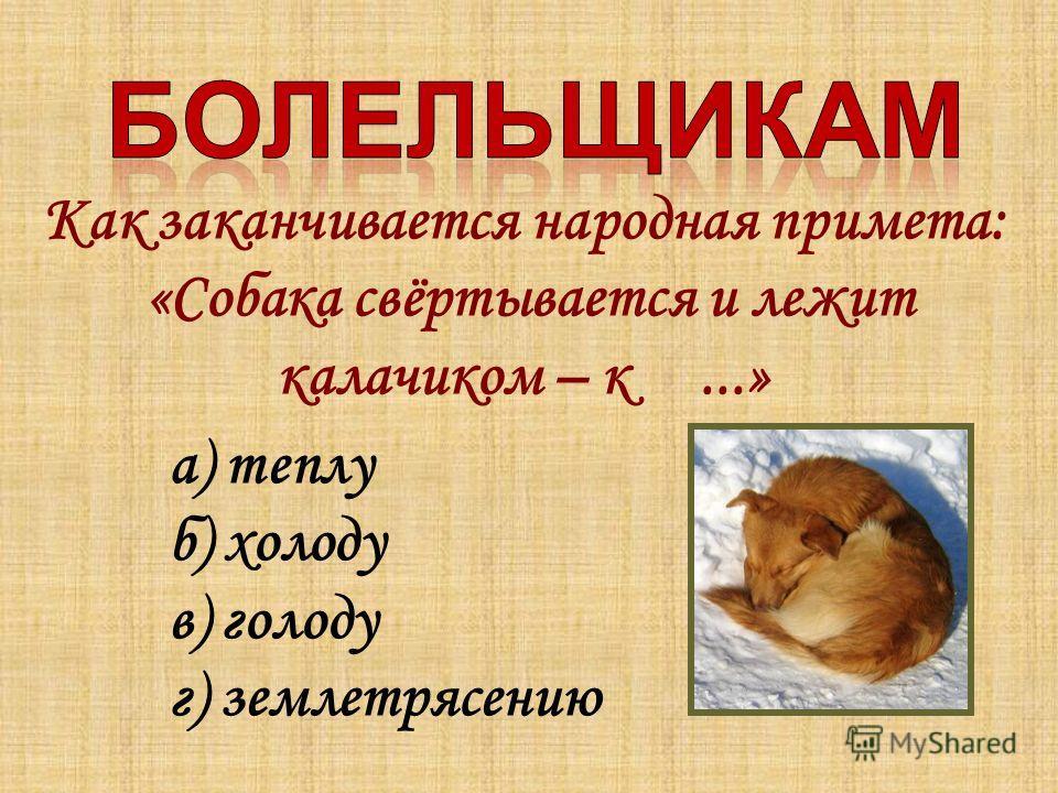 Как заканчивается народная примета: «Собака свёртывается и лежит калачиком – к...» а) теплу б) холоду в) голоду г) землетрясению