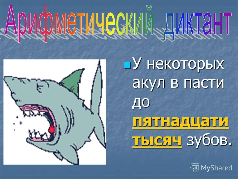 У некоторых акул в пасти до пятнадцати тысяч зубов.