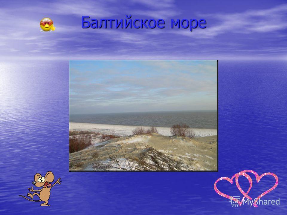 Небесный лик Калининграда