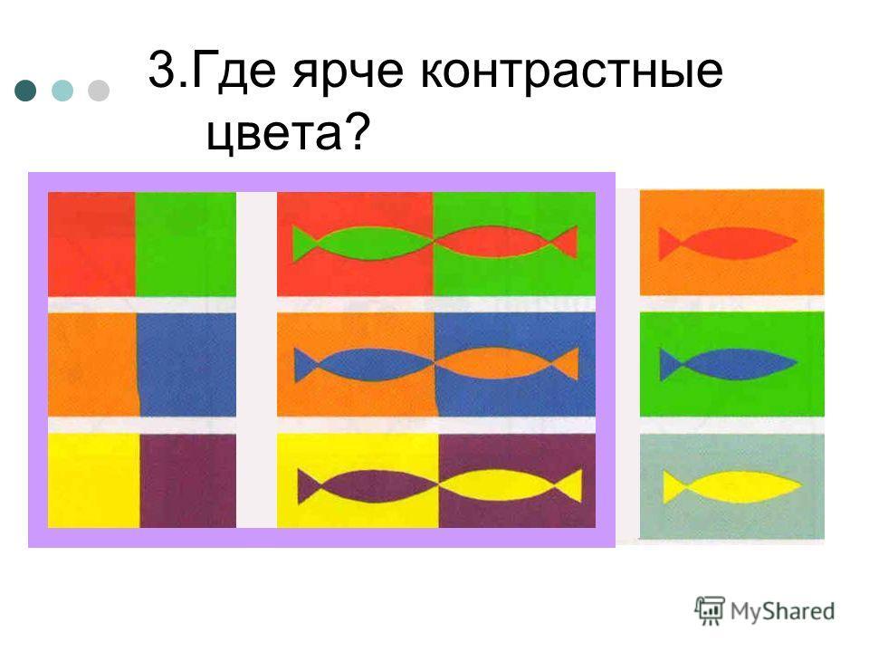 3. Где ярче контрастные цвета?
