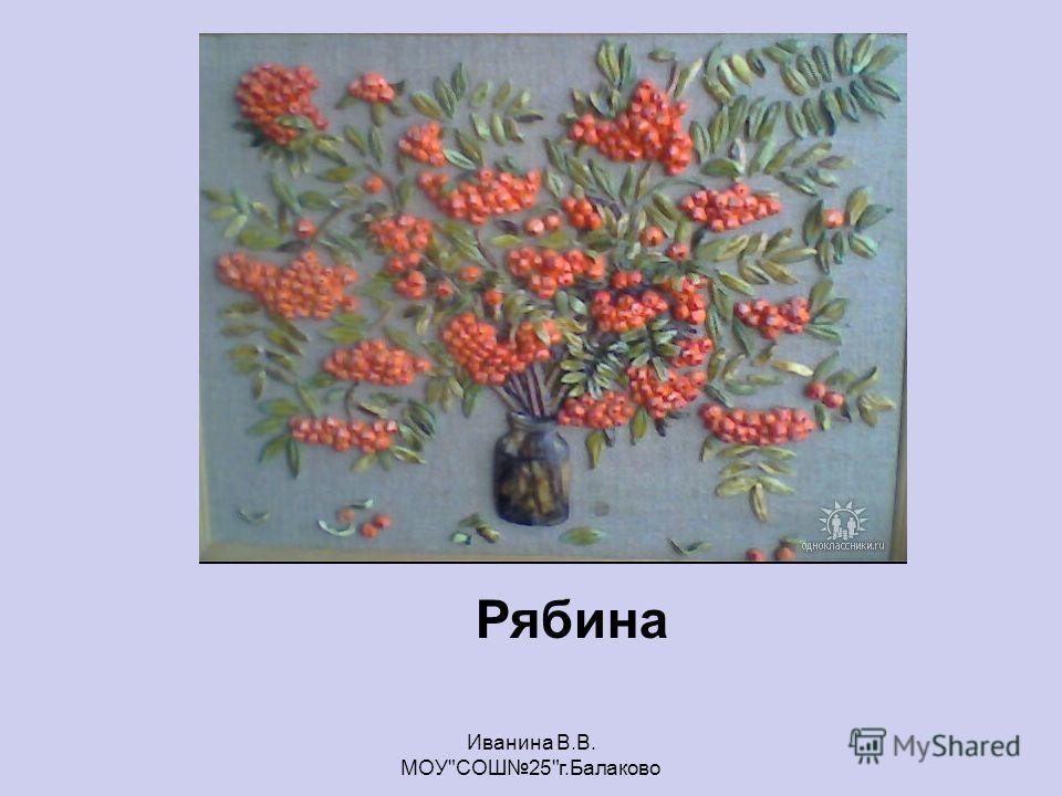 Рябина Иванина В.В. МОУСОШ25г.Балаково