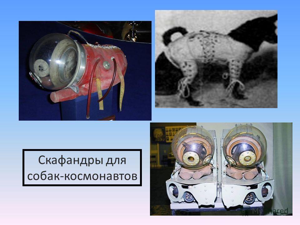 Скафандры для собак-космонавтов