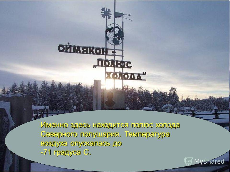 Именно здесь находится полюс холода Северного полушария. Температура воздуха опускалась до -71 градуса С.