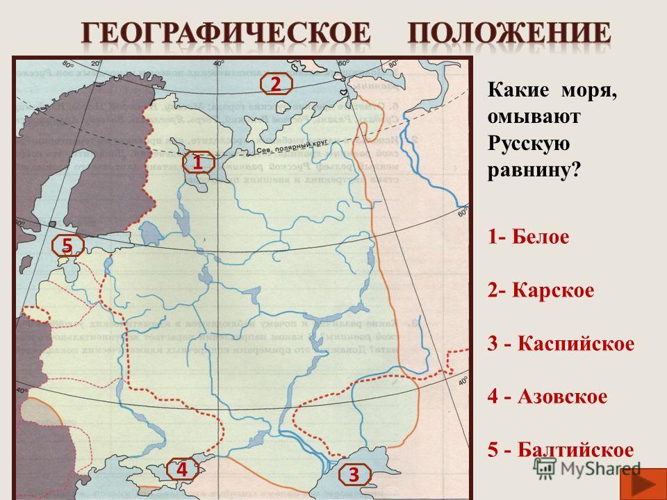1- Белое 2- Карское 3 - Каспийское 4 - Азовское 5 - Балтийское 1 2 4 3 5 Какие моря, омывают Русскую равнину?