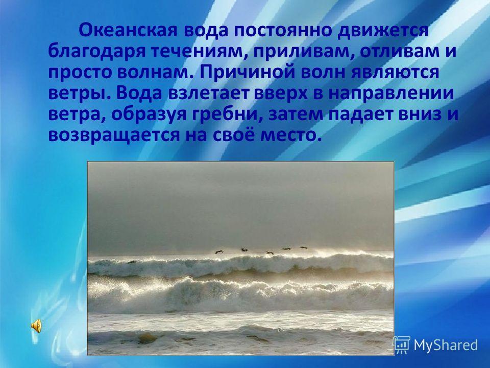 Океанская вода постоянно движется благодаря течениям, приливам, отливам и просто волнам. Причиной волн являются ветры. Вода взлетает вверх в направлении ветра, образуя гребни, затем падает вниз и возвращается на своё место.