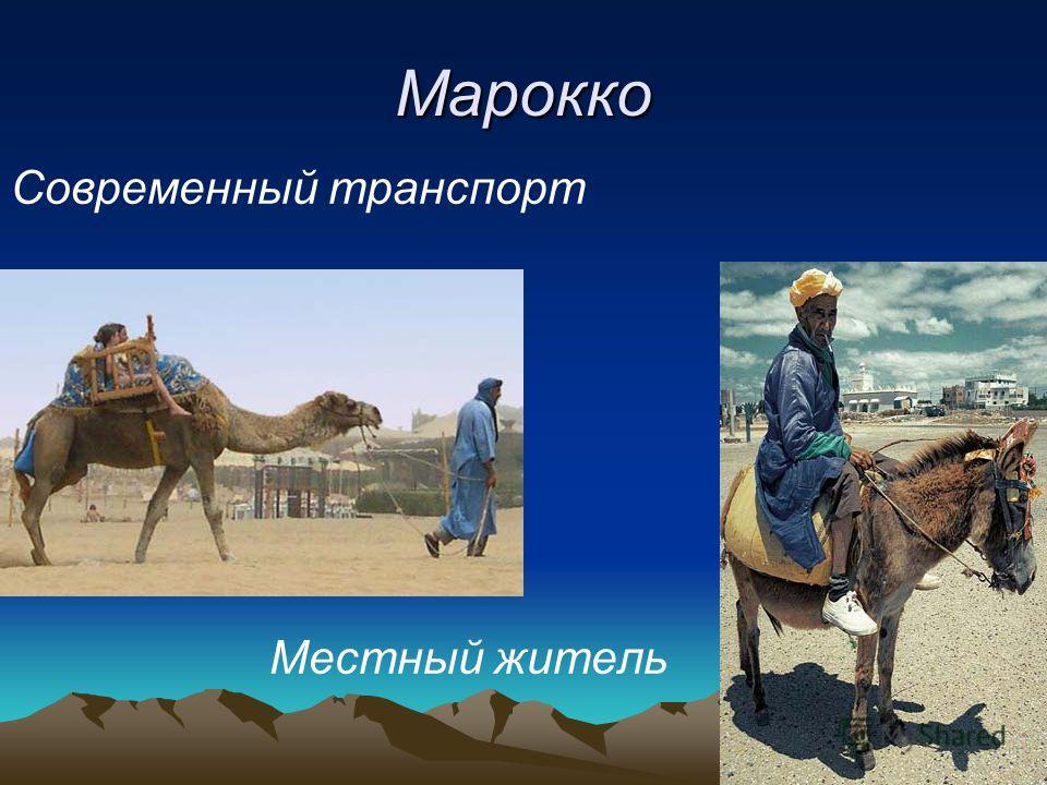 Марокко Современный транспорт Местный житель