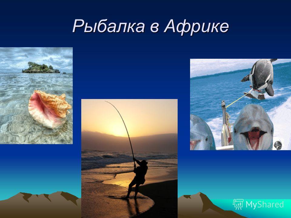 Рыбалка в Африке Рыбалка в Африке