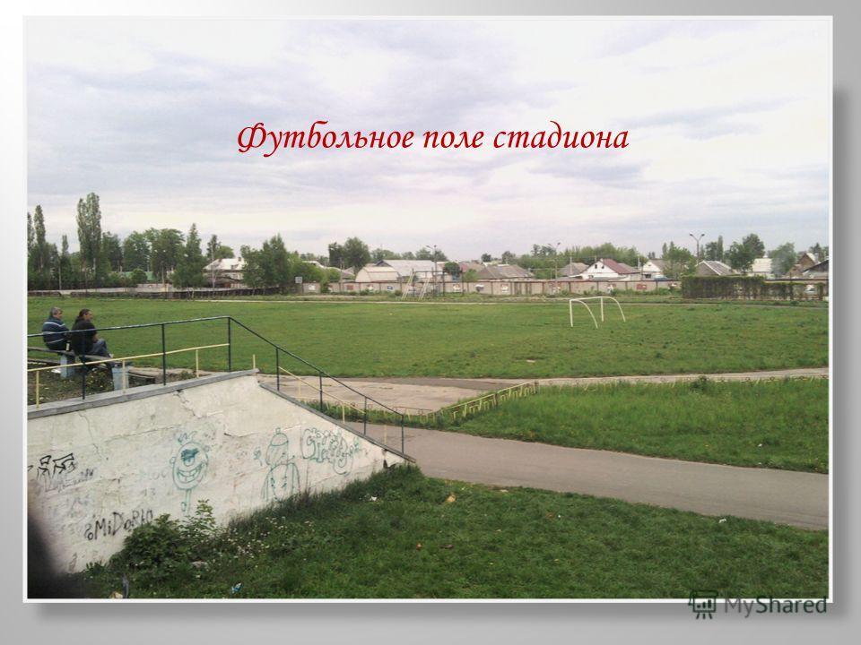 Футбольное поле стадиона