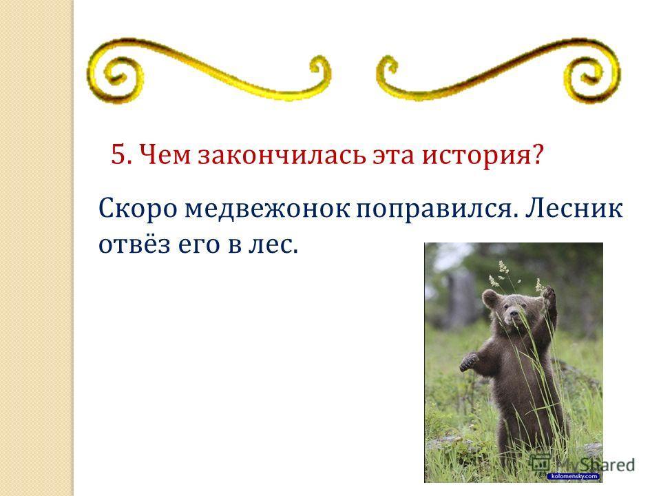 5. Чем закончилась эта история? Скоро медвеженок поправился. Лесник отвёз его в лес.