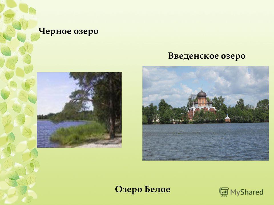 Черное озеро Введенское озеро Озеро Белое