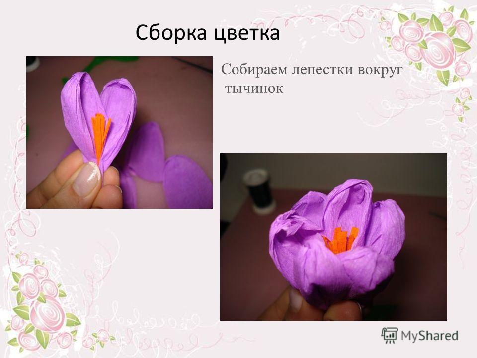 Сборка цветка Собираем лепестки вокруг тычинок