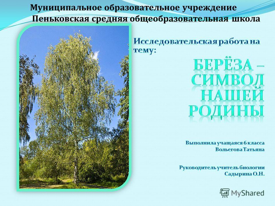 Муниципальное образовательное учреждение Пеньковская средняя общеобразовательная школа
