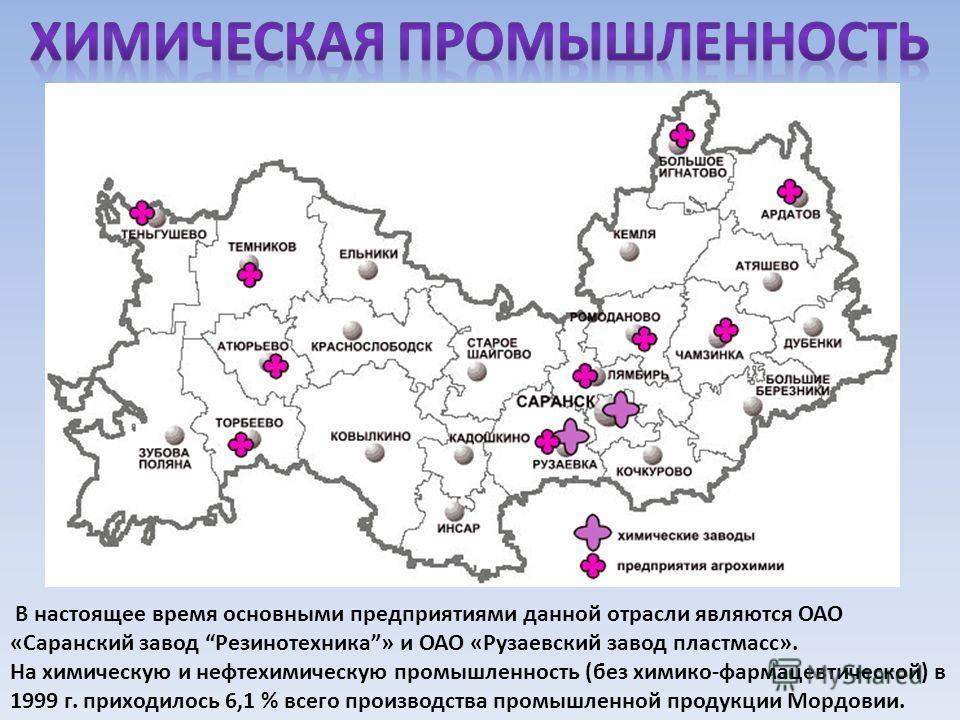 В настоящее время основными предприятиями данной отрасли являются ОАО «Саранский завод Резинотехника» и ОАО «Рузаевский завод пластмасс». На химическую и нефтехимическую промышленность (без химико-фармацевтической) в 1999 г. приходилось 6,1 % всего п