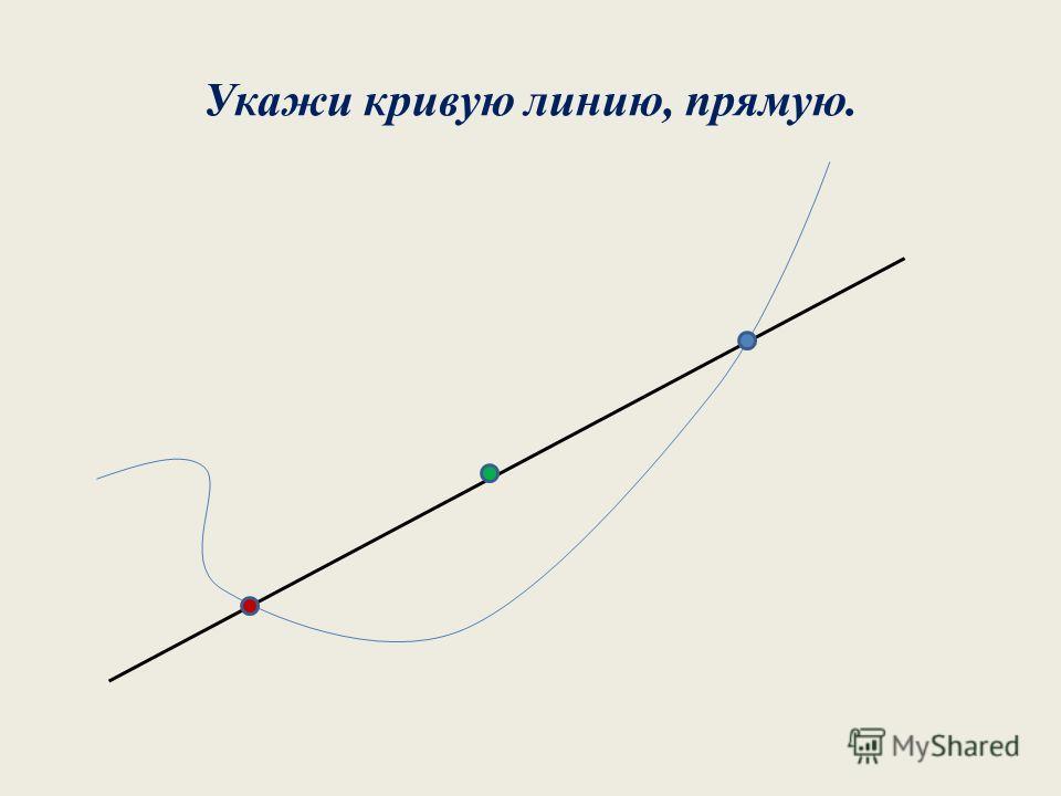 Укажи кривую линию, прямую.