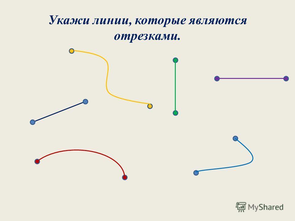 Укажи линии, которые являются отрезками.