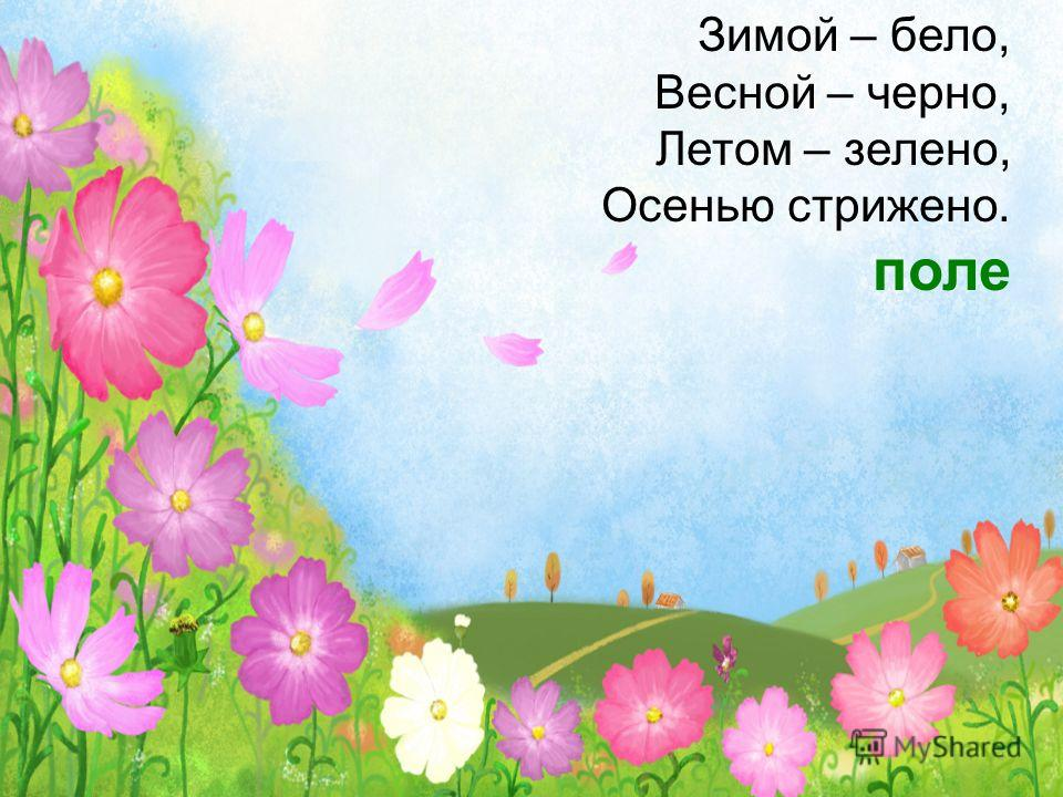 Зимой – бело, Весной – черно, Летом – зелено, Осенью стрижено. поле