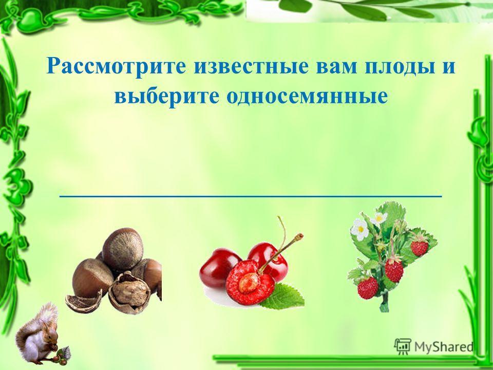 Рассмотрите известные вам плоды и выберите односемянные _______________________________