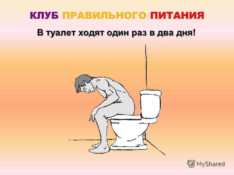 В туалет ходят один раз в два дня!
