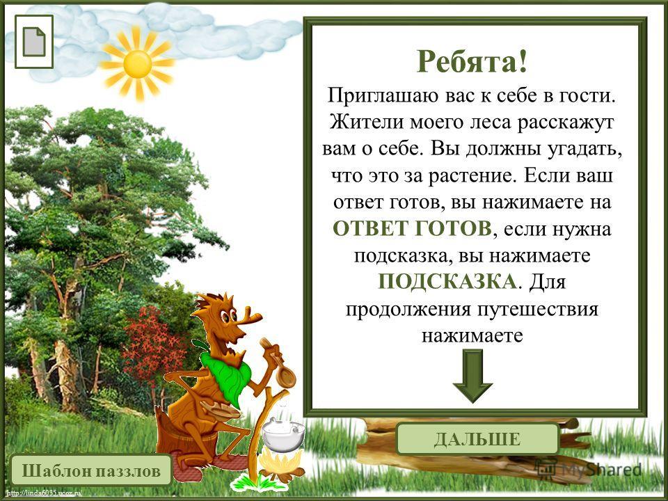 http://linda6035.ucoz.ru/ ДАЛЬШЕ Ребята! Приглашаю вас к себе в гости. Жители моего леса расскажут вам о себе. Вы должны угадать, что это за растение. Если ваш ответ готов, вы нажимаете на ОТВЕТ ГОТОВ, если нужна подсказка, вы нажимаете ПОДСКАЗКА. Дл