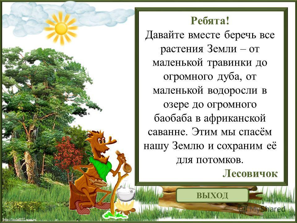 http://linda6035.ucoz.ru/ Ребята! Давайте вместе беречь все растения Земли – от маленькой травинки до огромного дуба, от маленькой водоросли в озере до огромного баобаба в африканской саванне. Этим мы спасём нашу Землю и сохраним её для потомков. Лес