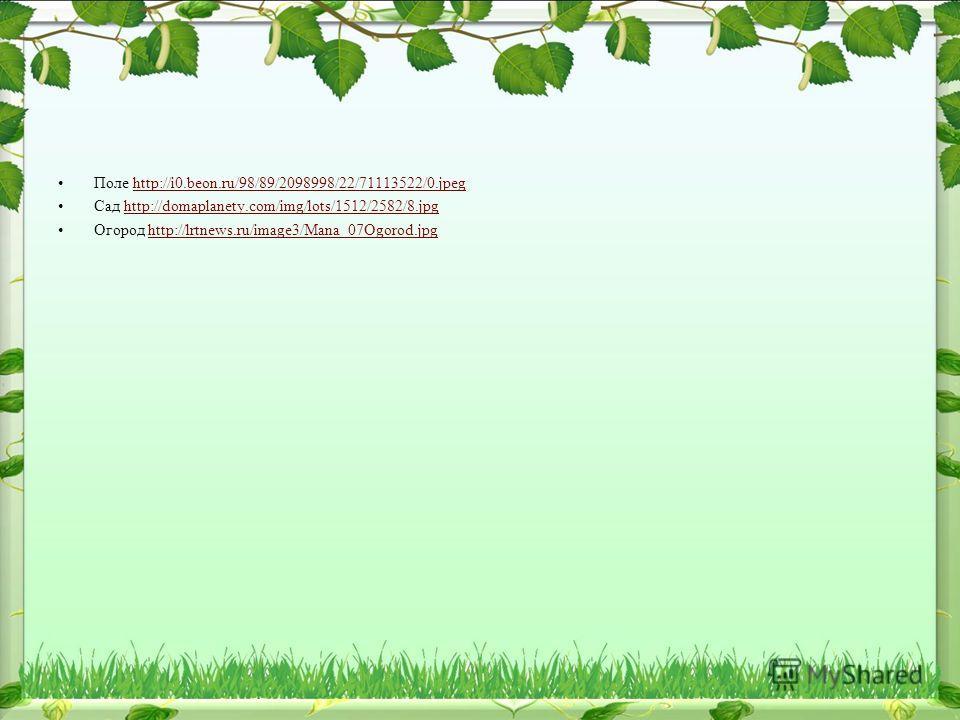 Поле http://i0.beon.ru/98/89/2098998/22/71113522/0.jpeghttp://i0.beon.ru/98/89/2098998/22/71113522/0. jpeg Сад http://domaplanety.com/img/lots/1512/2582/8.jpghttp://domaplanety.com/img/lots/1512/2582/8. jpg Огород http://lrtnews.ru/image3/Mana_07Ogor
