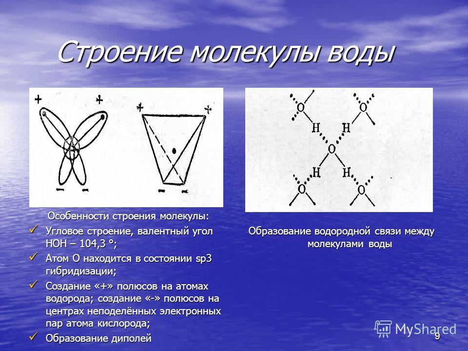 Строение молекулы воды Строение молекулы воды Образование водородной связи между молекулами воды 9 Особенности строения молекулы: Особенности строения молекулы: Угловое строение, валентный угол НОН – 104,3 °; Угловое строение, валентный угол НОН – 10