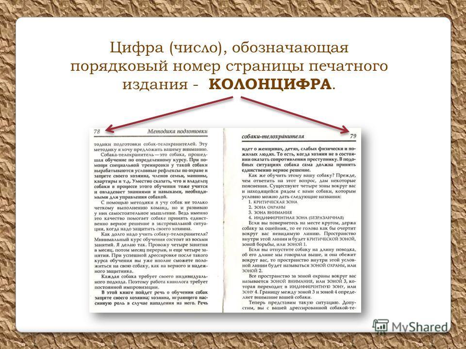 Цифра (число), обозначающая порядковый номер страницы печатного издания - КОЛОНЦИФРА.