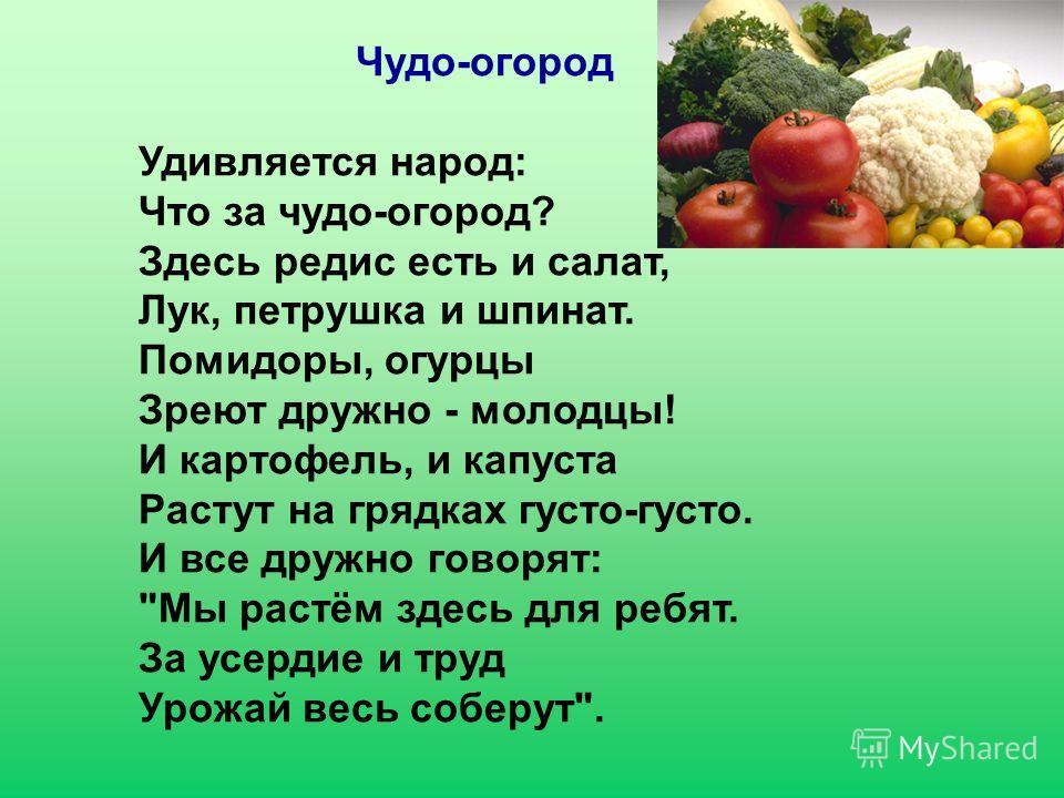 Чудо-огород Удивляется народ: Что за чудо-огород? Здесь редис есть и салат, Лук, петрушка и шпинат. Помидоры, огурцы Зреют дружно - молодцы! И картофель, и капуста Растут на грядках густо-густо. И все дружно говорят: