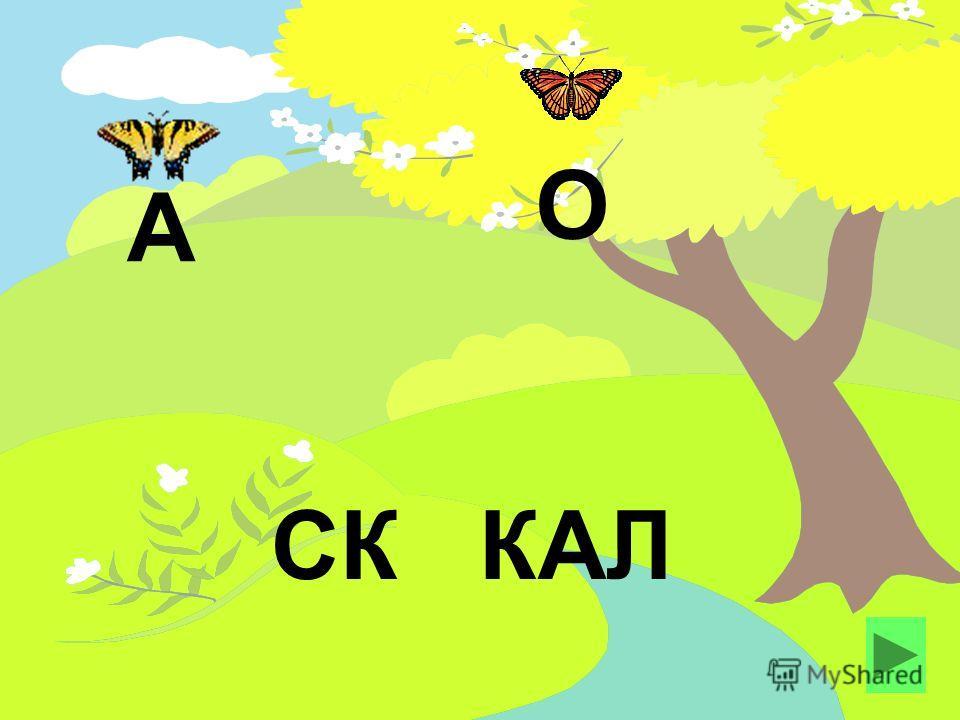 СК КАЛ А О