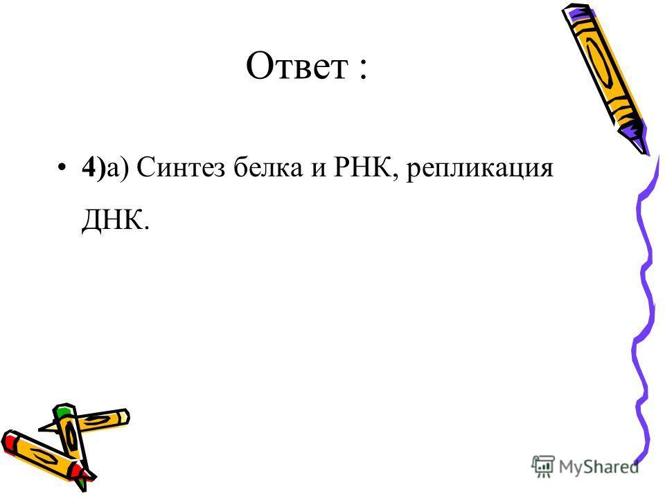 Ответ : 4)а) Синтез белка и РНК, репликация ДНК.