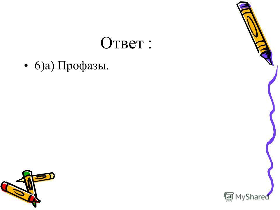 Ответ : 6)а) Профазы.