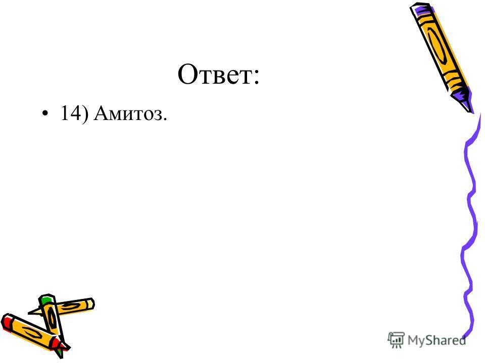 Ответ: 14) Амитоз.