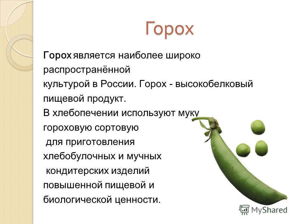 Горох Горох является наиболее широко распространённой культурой в России. Горох - высокобелковый пищевой продукт. В хлебопечении используют муку гороховую сортовую для приготовления хлебобулочных и мучных кондитерских изделий повышенной пищевой и био