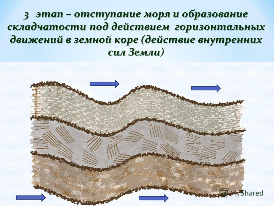 3 этап – отступание моря и образование складчатости под действием горизонтальных движений в земной коре (действие внутренних сил Земли 3 этап – отступание моря и образование складчатости под действием горизонтальных движений в земной коре (действие в