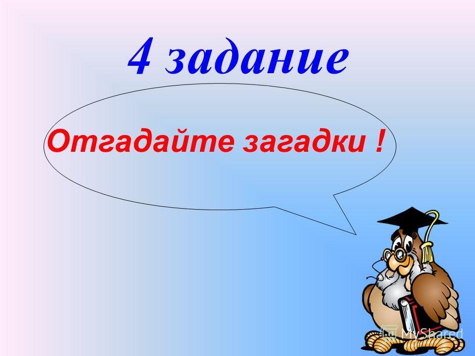 4 задание Отгадайте загадки !