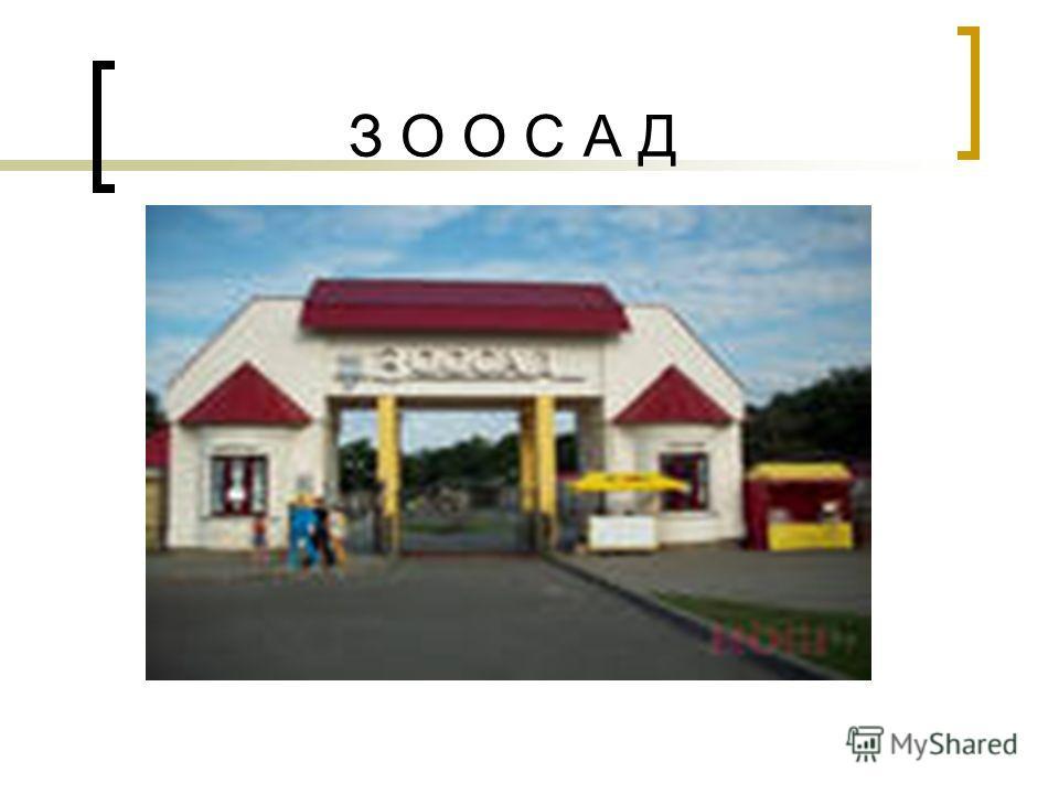 З О О С А Д