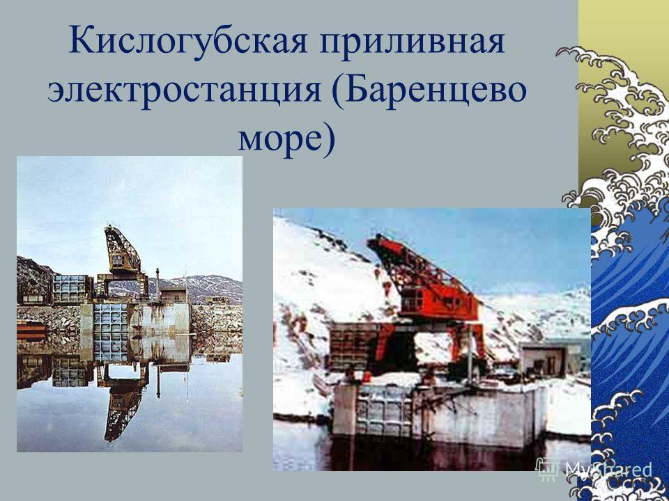 Чёрное море не имеет важного промыслового значения, но и здесь ведётся лов рыбы скумбрия ставрида