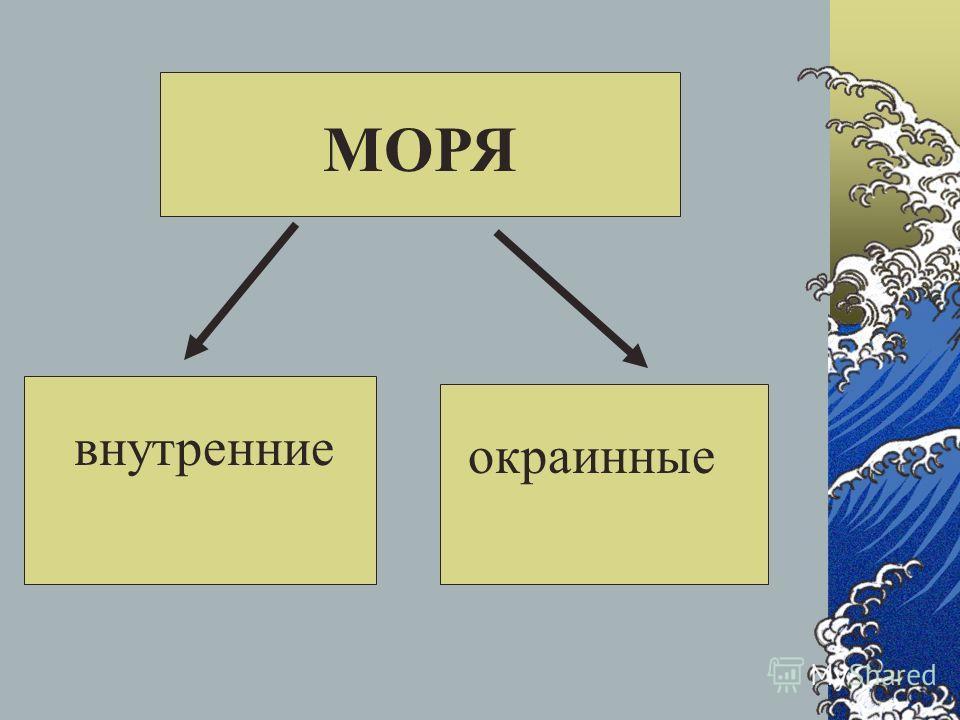Моря, омывающие берега России 2011