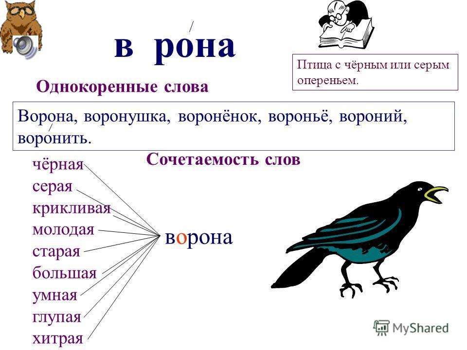 в рона о Однокоренные слова Ворона, воронушка, воронёнок, вороньё, вороний, воронить. Сочетаемость слов ворона чёрная серая крикливая молодая старая большая умная глупая хитрая Птица с чёрным или серым опереньем.