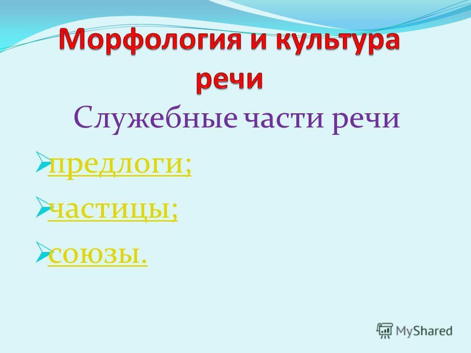 Служебные части речи предлоги; частицы; союзы.