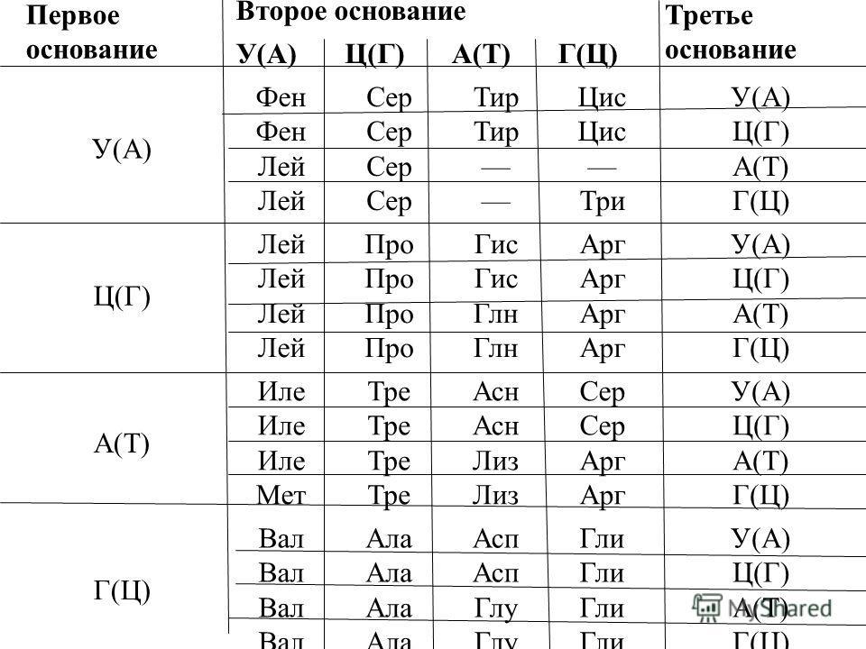9. Последовательность азотистых оснований в молекуле ДНК следующая: АТТААЦГЦТАТ. Какова будет последовательность азотистых оснований в м- РНК? а) ТААТТГЦГАТА б) ГЦЦГТТАТЦГЦ в) УААУЦЦГУТУТ г) УААУУГЦГАУА