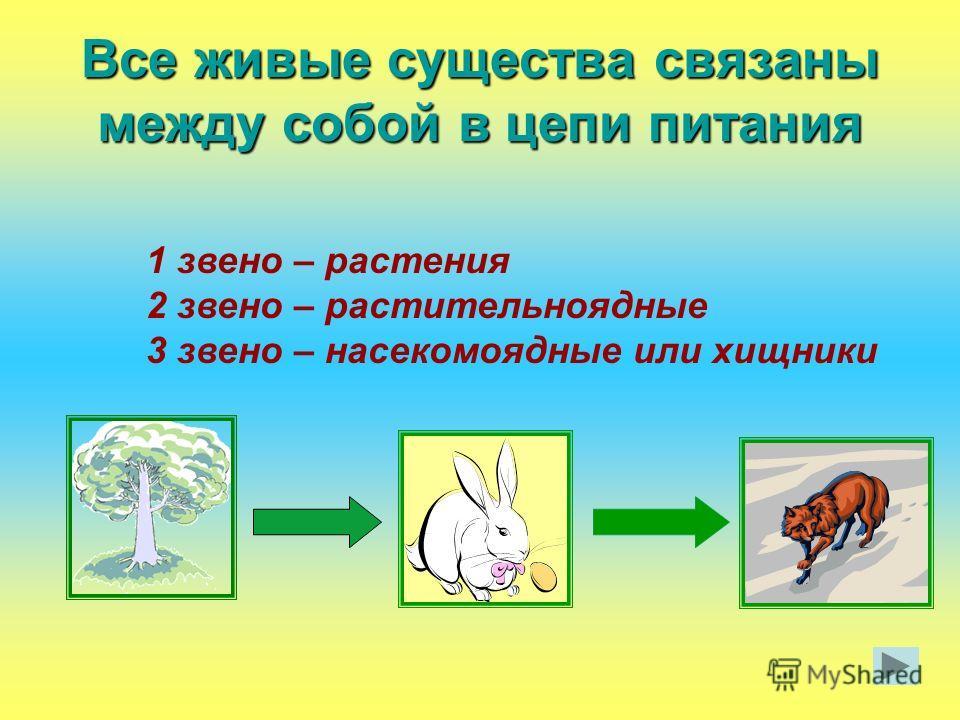 Все живые существа связаны между собой в цепи питания 1 звено – растения 2 звено – растительноядные 3 звено – насекомоядные или хищники