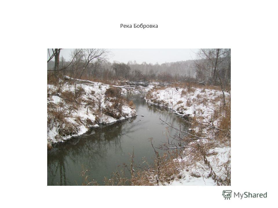 Река Бобровка