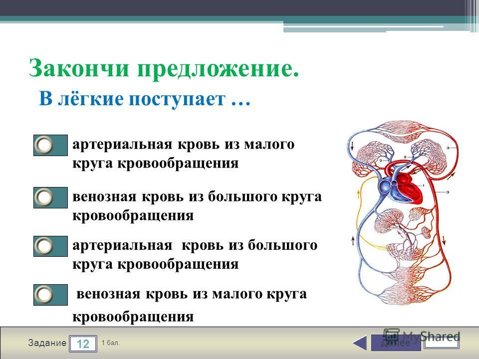 Далее 12 Задание 1 бал. Закончи предложение. артериальная кровь из малого круга кровообращения венозная кровь из большого круга кровообращения артериальная кровь из большого круга кровообращения венозная кровь из малого круга кровообращения В лёгкие